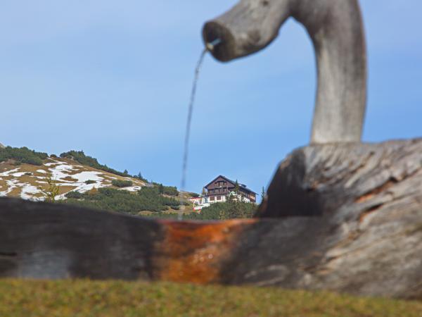 Traditioneller Brunnentrog