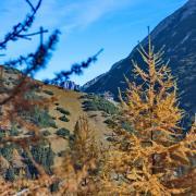 Traumhafte Landschaftsbilder wie sie kaum wo anders zu finden sind. Das ist Herbst im Karwendel